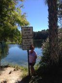 Beware Alligators!