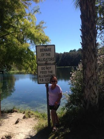 Beware Alligators!