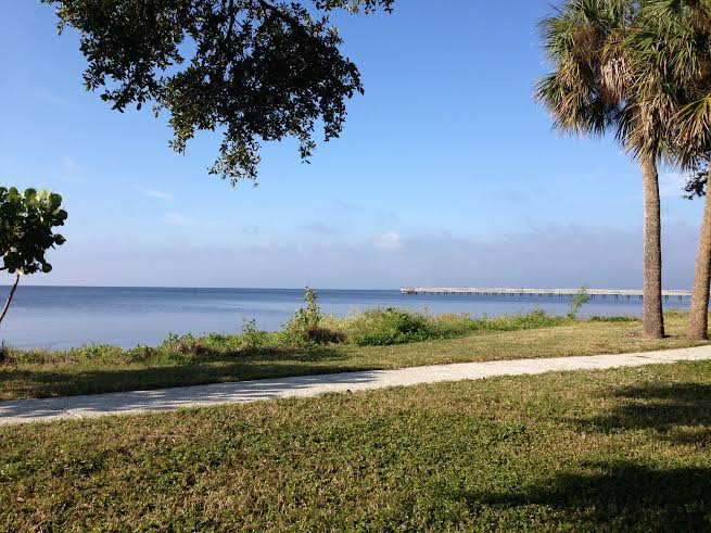 After my 2 mile walk I like to sit at a picnic bench with my morning smoothie and my book. Paradise!